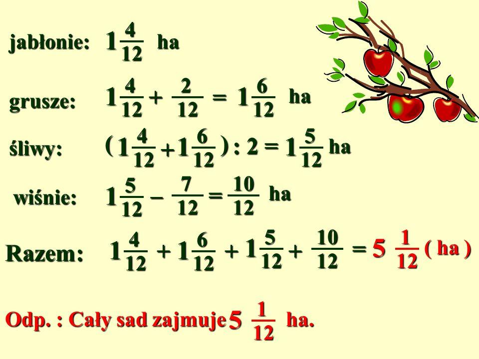 jabłonie: 412 1 ha grusze:o212 ha więcej niż jabłonie śliwy: 2 razy mniej ha niż jabłonie i grusze razem wiśnie:o ha mniej niż śliwy 712 +=212412 1612 1 ha (412 1 +612 1 ) : 2 = 512 1 ha 5 12 1 –712 =1012 ha Razem: 4 12 1 + 6 12 1 +512 1 +1012 =112 5 ( ha ) Odp.