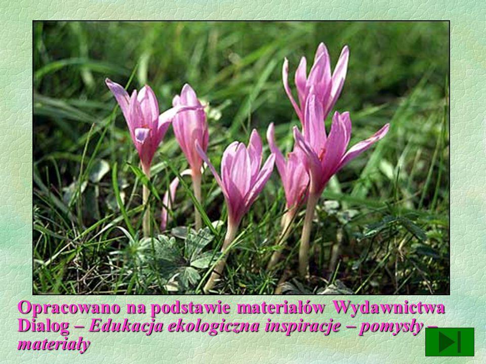 FORMY OCHRONY PRZYRODY § Ochrona gatunkowa roślin i zwierząt § Pomniki przyrody § Rezerwaty przyrody § Parki narodowe § Parki krajobrazowe
