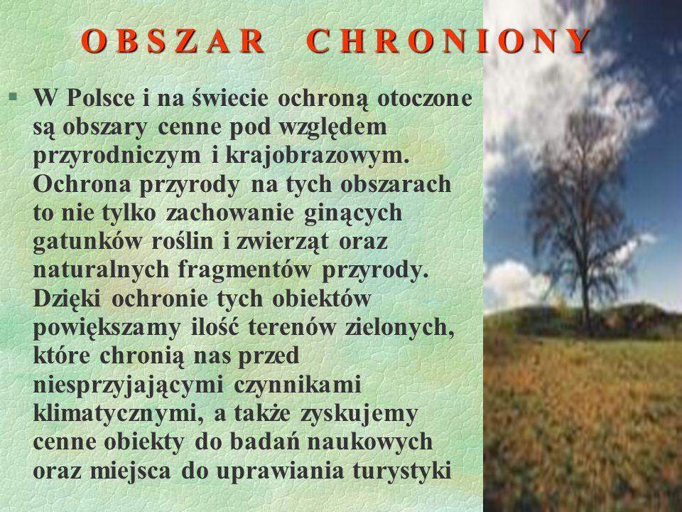 O B S Z A R C H R O N I O N Y §W Polsce i na świecie ochroną otoczone są obszary cenne pod względem przyrodniczym i krajobrazowym.