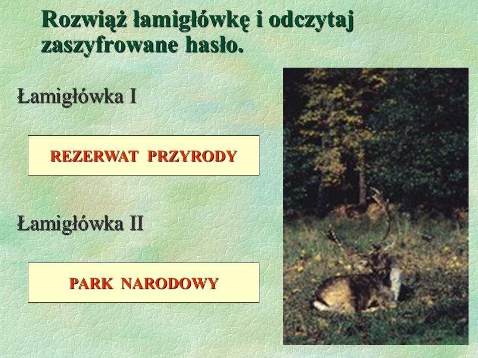 O B S Z A R C H R O N I O N Y §W Polsce i na świecie ochroną otoczone są obszary cenne pod względem przyrodniczym i krajobrazowym. Ochrona przyrody na