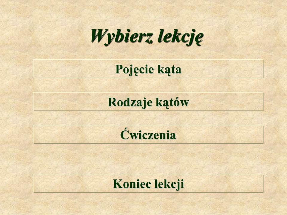 K ą t y Anna Gadomska Szkoła Podstawowa Nr 79 Łódź