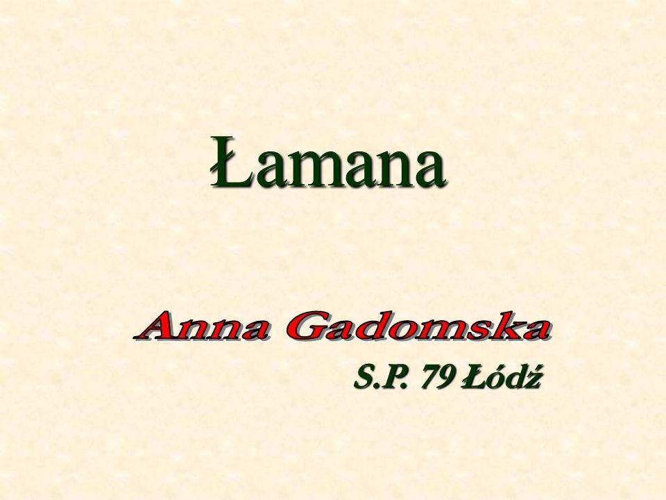 Łamana S.P. 79 Łódź