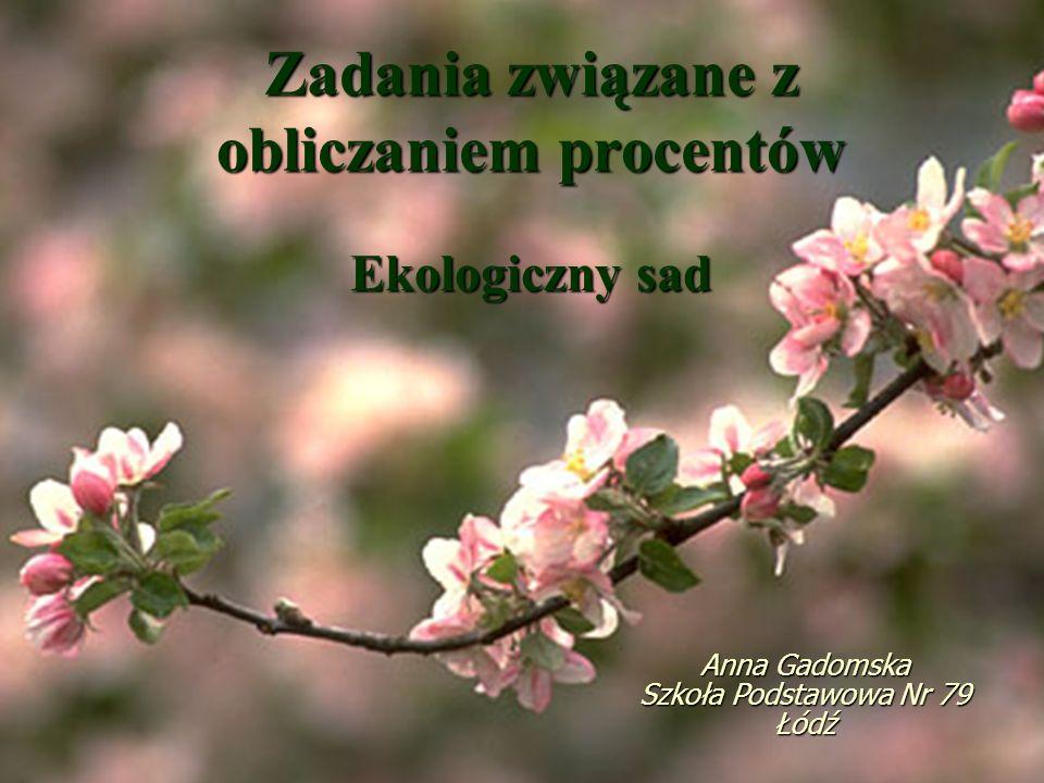 Zadania związane z obliczaniem procentów Ekologiczny sad Anna Gadomska Szkoła Podstawowa Nr 79 Łódź