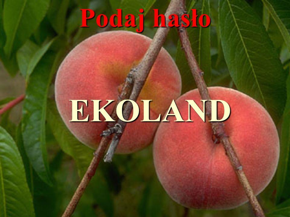 Zad.2.Ogrodnik miał w sadzie 12 grusz i 8 brzoskwiń.