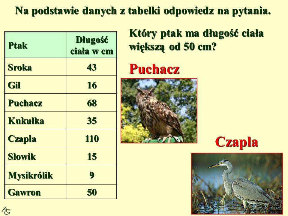 Na podstawie danych z tabelki odpowiedz na pytania.