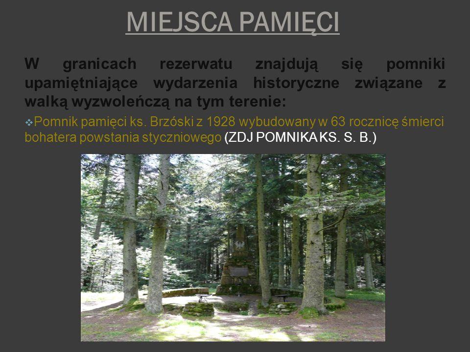 MIEJSCA PAMIĘCI W granicach rezerwatu znajdują się pomniki upamiętniające wydarzenia historyczne związane z walką wyzwoleńczą na tym terenie: Pomnik p