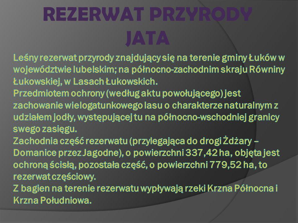 REZERWAT PRZYRODY JATA