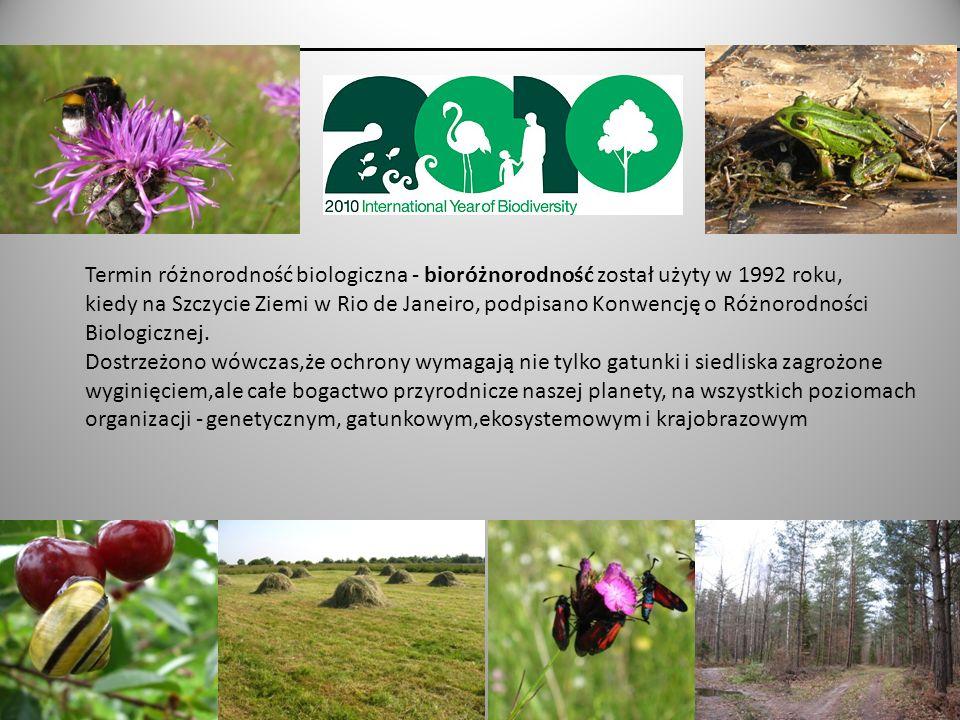 Europejska Sieć Ekologiczna Natura 2000 Celem sieci Natura 2000 jest zachowanie, ochrona i poprawa jakości środowiska najwartościowszych przyrodniczo fragmentów naszego kontynentu.