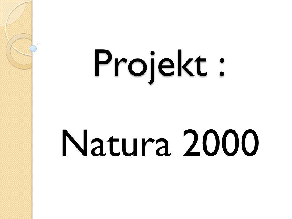 Natura 2000 jest to obszar,który nie jest objęty ochroną, lecz sam jest obszarem który chroni różne gatunki i siedliska z dyrektywy ptasiej i siedliskowej.