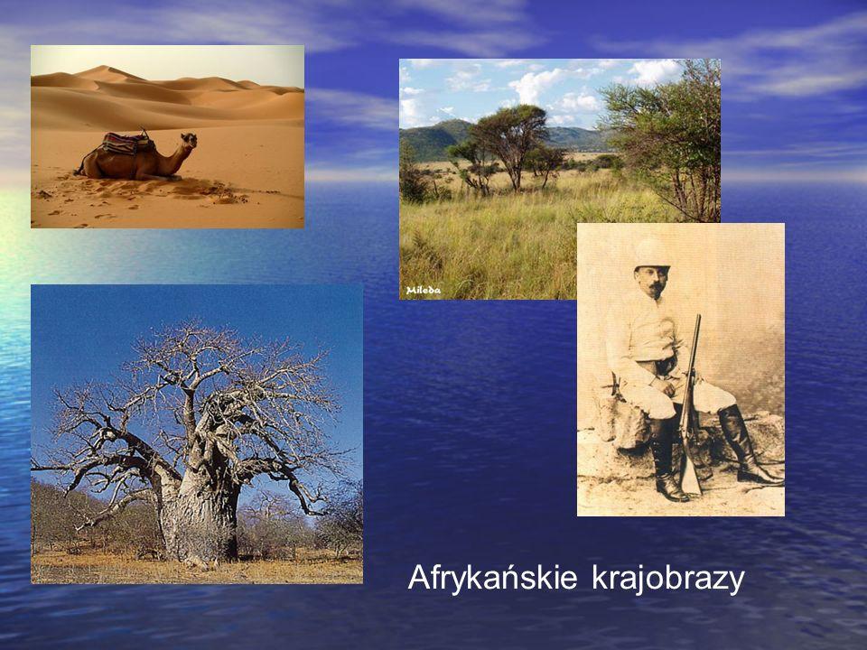 Afrykańskie krajobrazy