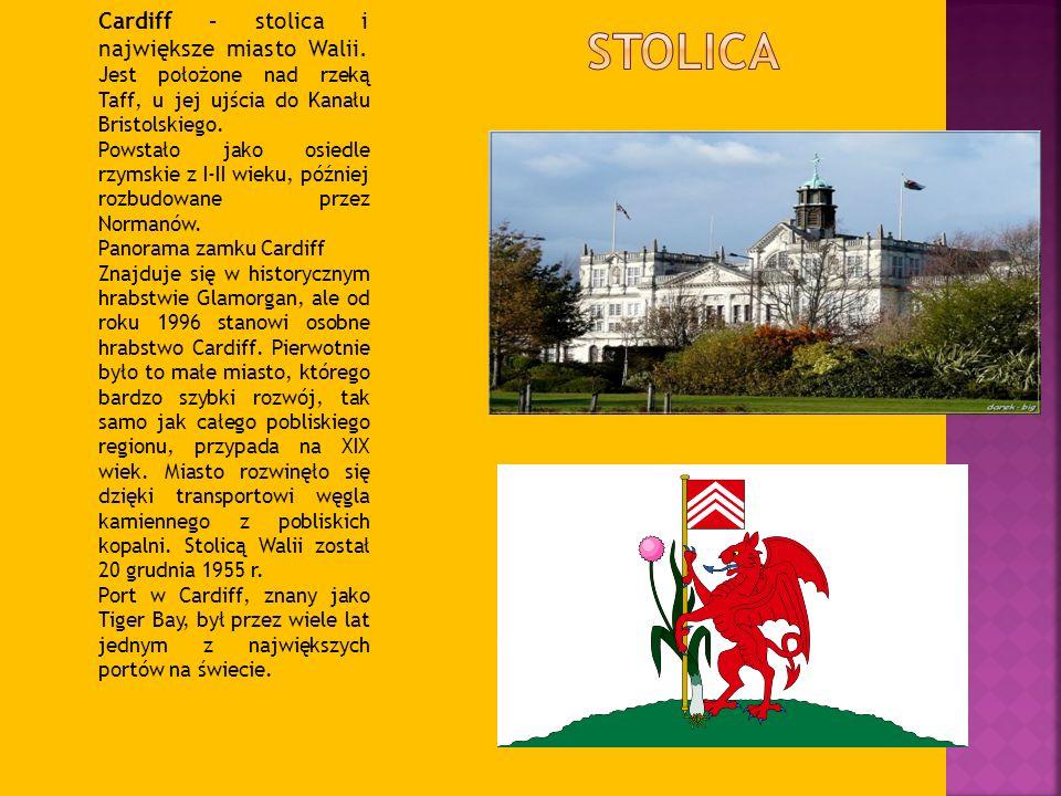 Cardiff – stolica i największe miasto Walii. Jest położone nad rzeką Taff, u jej ujścia do Kanału Bristolskiego. Powstało jako osiedle rzymskie z I-II
