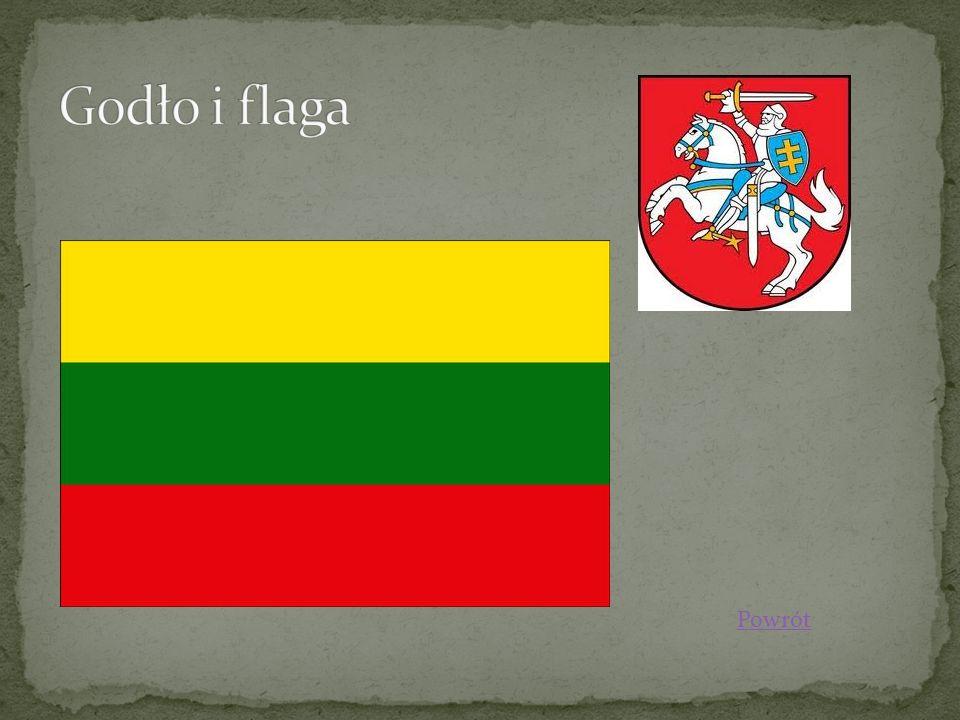 Język litewski - język z zespołu wschodniobałtyckiego języków bałtyckich, wchodzących w skład języków bałtosłowiańskich, którym posługuje się ok.