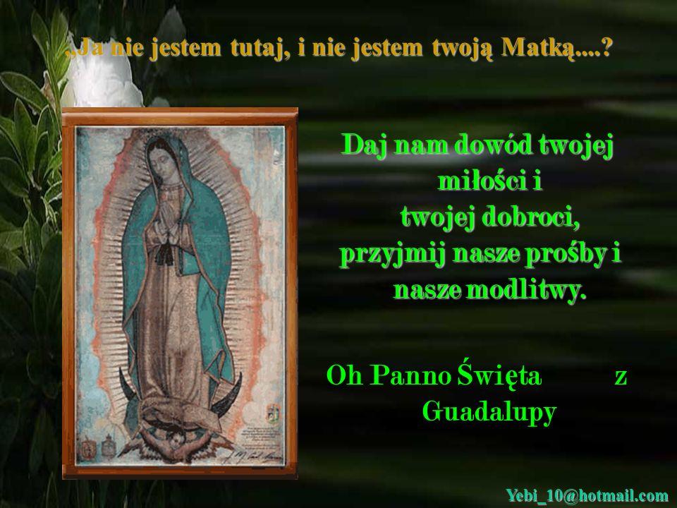 Ja nie jestem tutaj, i nie jestem twoją Matką....? List do Matki Bo ż ej z Guadalupy: b ł agam Ciebie w imieniu wszystkich ludzi ś wiata, pob ł ogos ł