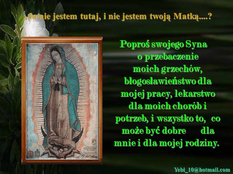 Ja nie jestem tutaj, i nie jestem twoją Matką....? Daj nam dowód twojej mi ł o ś ci i twojej dobroci, przyjmij nasze pro ś by i nasze modlitwy. przyjm