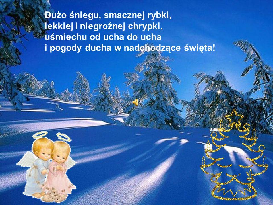 Dużo śniegu, smacznej rybki, lekkiej i niegroźnej chrypki, uśmiechu od ucha do ucha i pogody ducha w nadchodzące święta!