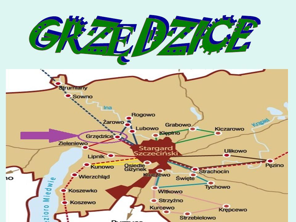 OGÓLNA CHARAKTERYSTYKA Jest to duża wieś, położona około 4 km na zachód od Stargardu Szczecińskiego, założona na początku XIII wieku jako własność biskupstwa kamieńskiego.
