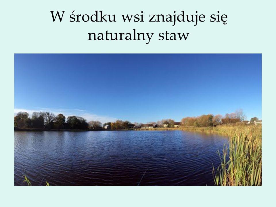 W środku wsi znajduje się naturalny staw
