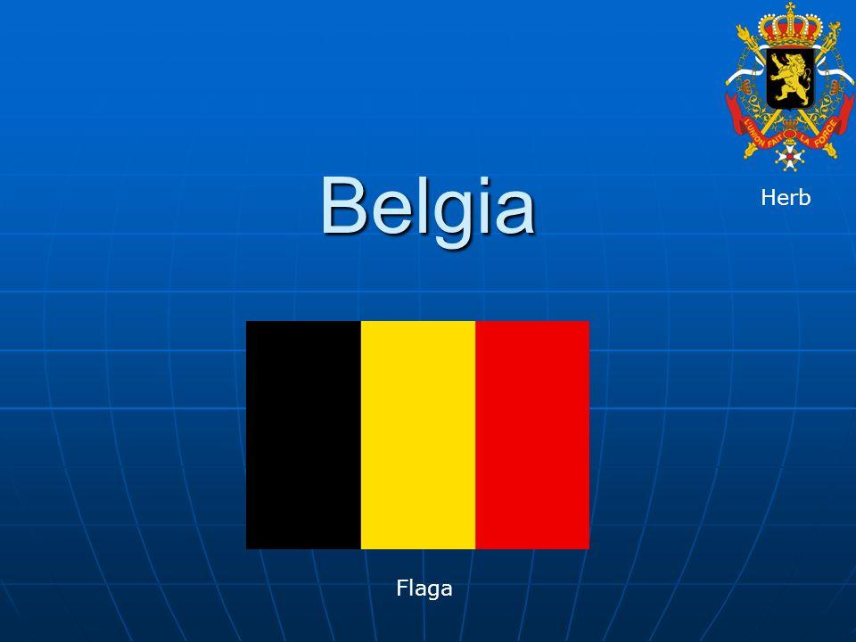 Królestwo Belgii państwo w zachodniej Europie w południowych Niderlandach.