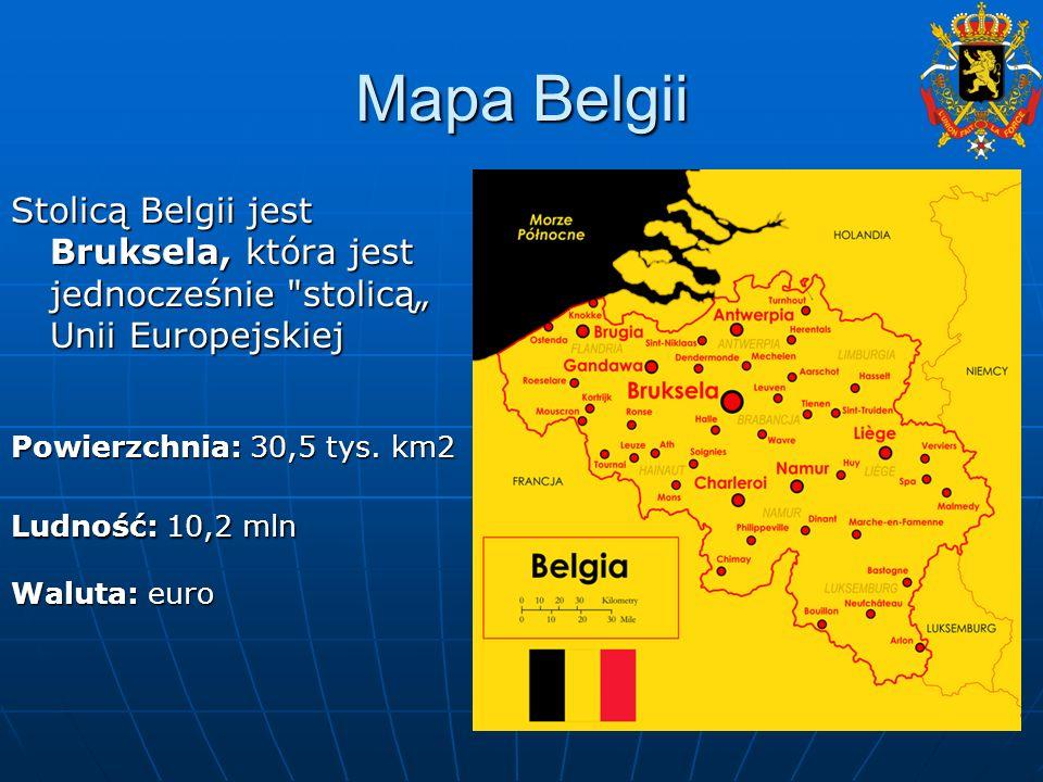 Belgia jest monarchią konstytucyjną.