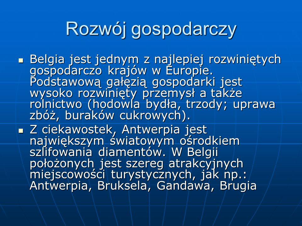 Prezentacje przygotowała: Natalia Pierzchlewicz