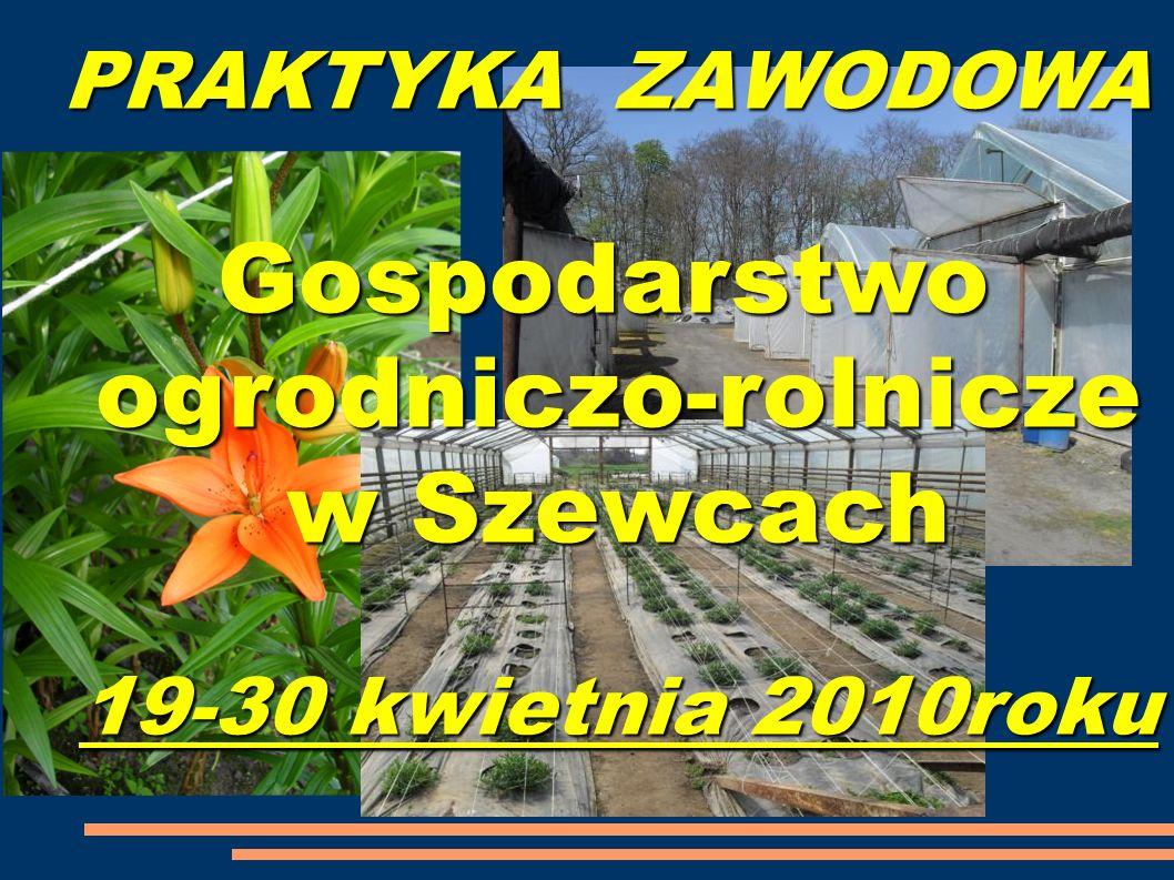 PRAKTYKA ZAWODOWA Gospodarstwo ogrodniczo-rolnicze w Szewcach 19-30 kwietnia 2010roku