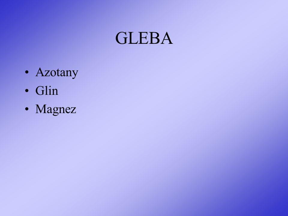 GLEBA Azotany Glin Magnez