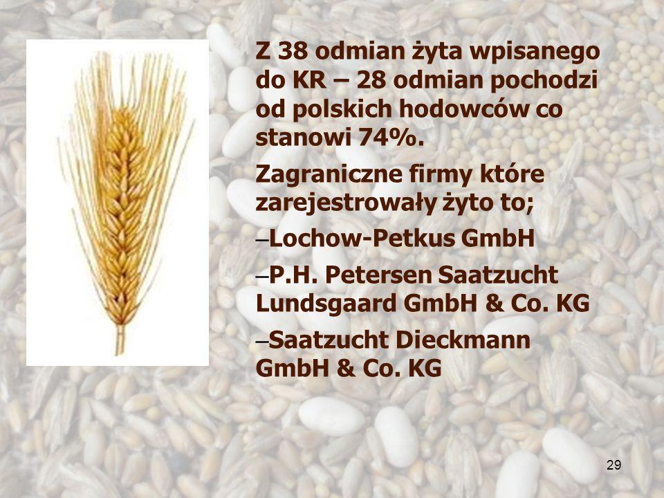 29 Z 38 odmian żyta wpisanego do KR – 28 odmian pochodzi od polskich hodowców co stanowi 74%. Zagraniczne firmy które zarejestrowały żyto to; – Lochow