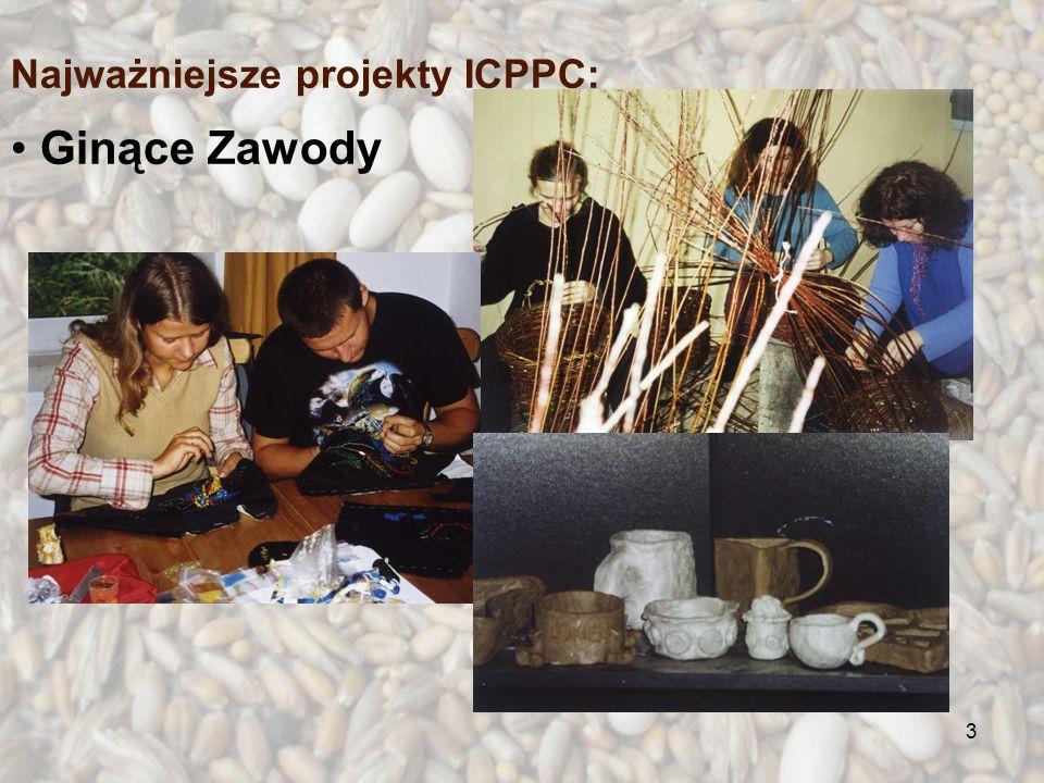3 Ginące Zawody Najważniejsze projekty ICPPC: