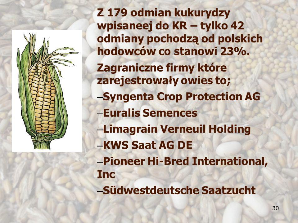 30 Z 179 odmian kukurydzy wpisaneej do KR – tylko 42 odmiany pochodzą od polskich hodowców co stanowi 23%. Zagraniczne firmy które zarejestrowały owie