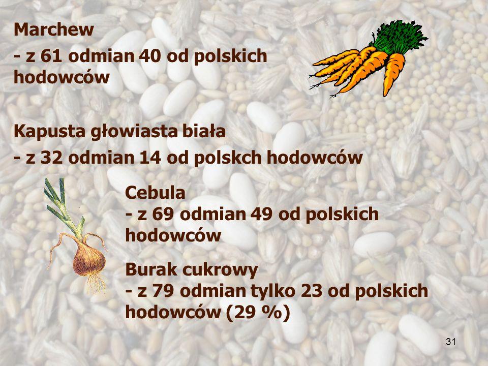 31 Cebula - z 69 odmian 49 od polskich hodowców Marchew - z 61 odmian 40 od polskich hodowców Kapusta głowiasta biała - z 32 odmian 14 od polskch hodowców Burak cukrowy - z 79 odmian tylko 23 od polskich hodowców (29 %)