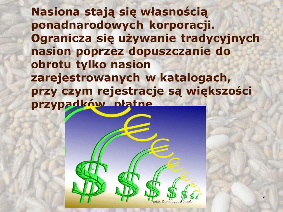 7 Nasiona stają się własnością ponadnarodowych korporacji. Ogranicza się używanie tradycyjnych nasion poprzez dopuszczanie do obrotu tylko nasion zare