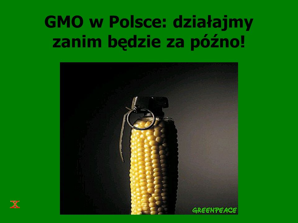 Greenpeace i GMO Zaczął kampanię w 1996 roku i jest aktywny w ponad 30 krajach na 5 kontynentach, dysponuje własnym zapleczem badawczym Brak popytu ze strony konsumentów – odrzucenie GMO