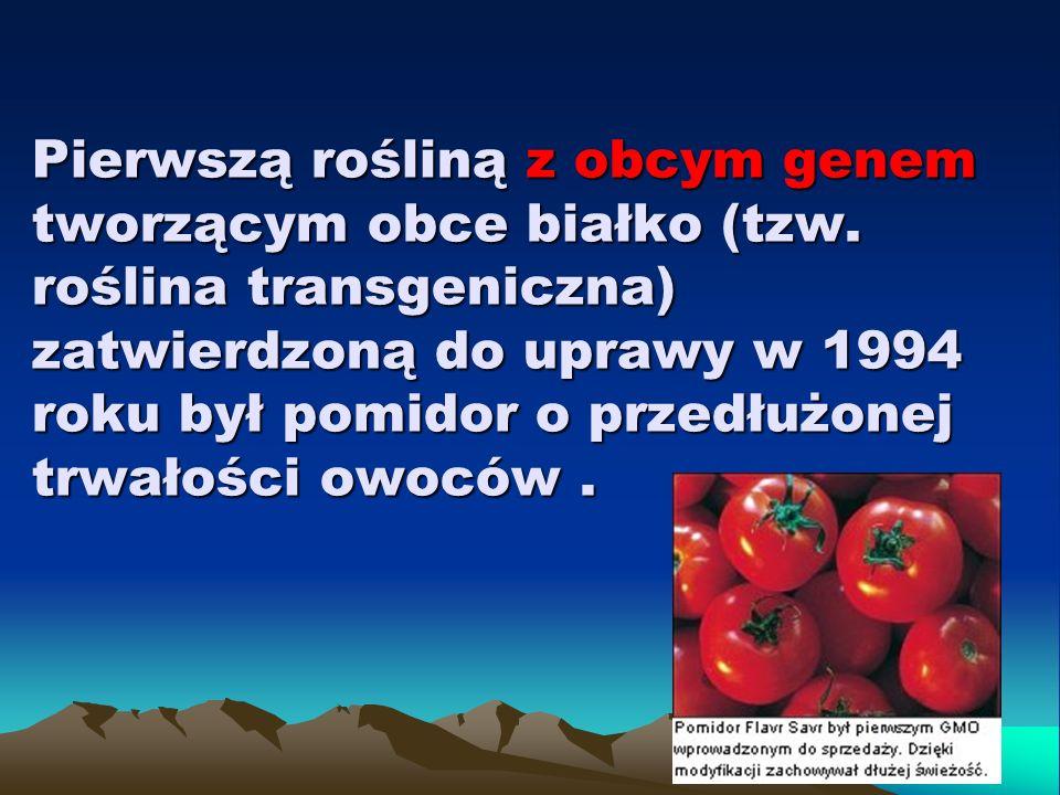 Pierwszą rośliną z obcym genem tworzącym obce białko (tzw. roślina transgeniczna) zatwierdzoną do uprawy w 1994 roku był pomidor o przedłużonej trwało
