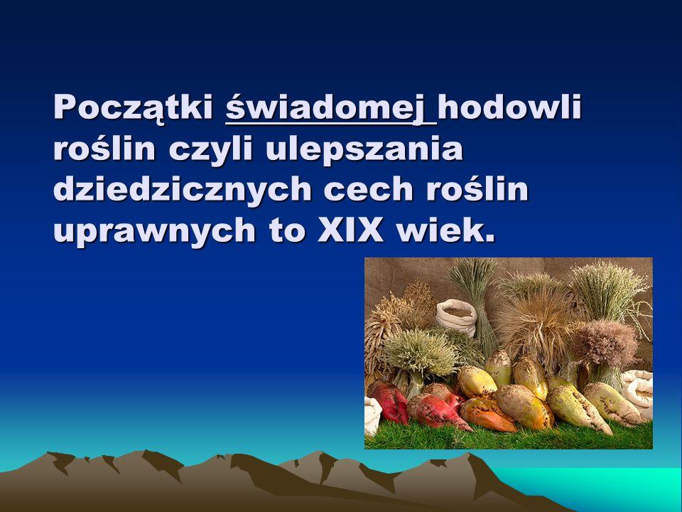 Coraz liczniejsze są doniesienia o masowych zatruciach pszczół hodowlanych (zebrane w Pszczelarzu polskim nr 4/28).