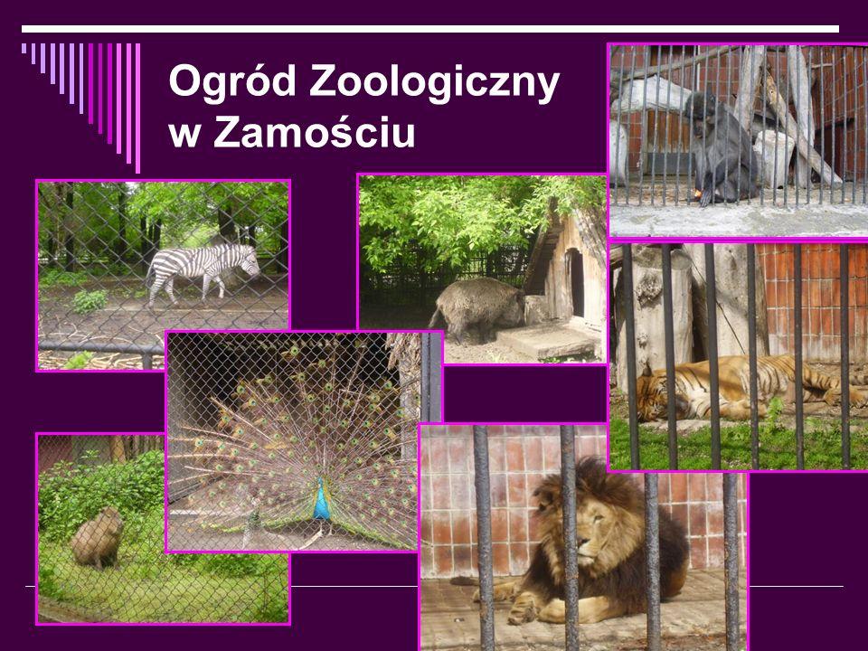 Ogród Zoologiczny w Zamościu