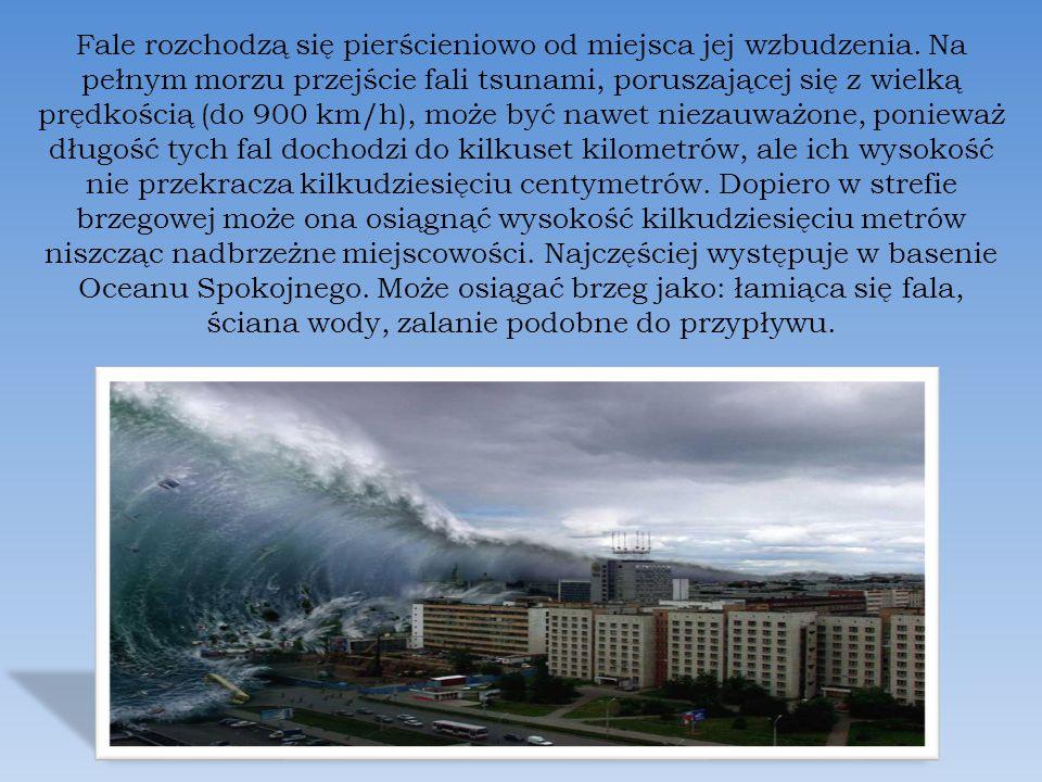 Fale rozchodzą się pierścieniowo od miejsca jej wzbudzenia. Na pełnym morzu przejście fali tsunami, poruszającej się z wielką prędkością (do 900 km/h)