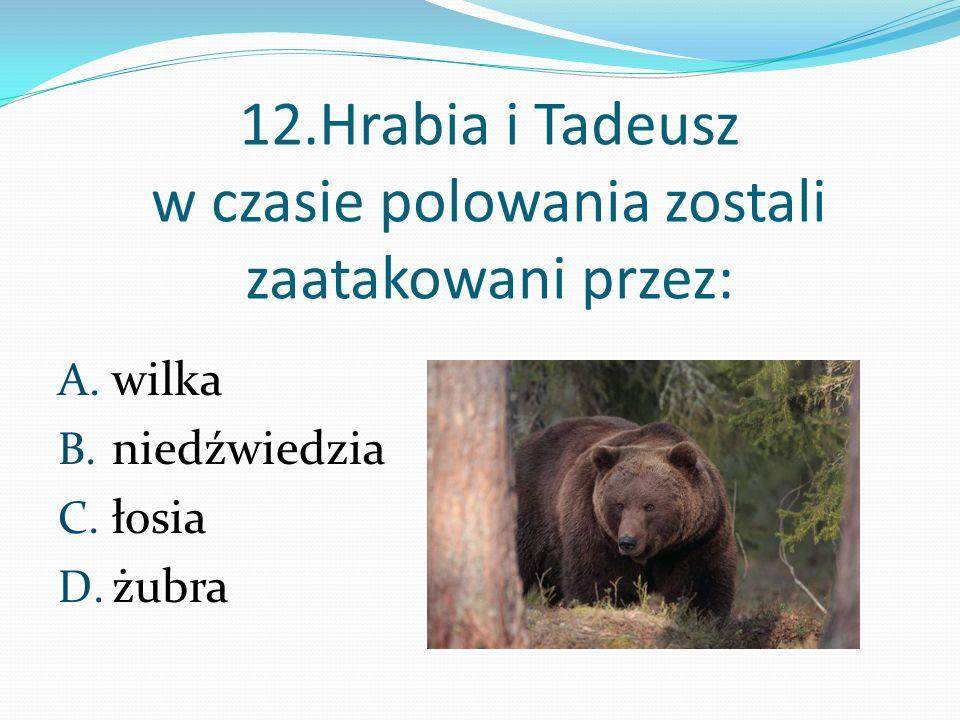 12.Hrabia i Tadeusz w czasie polowania zostali zaatakowani przez: A. wilka B. niedźwiedzia C. łosia D. żubra