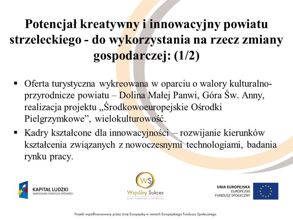 Potencjał kreatywny i innowacyjny powiatu strzeleckiego - do wykorzystania na rzecz zmiany gospodarczej: (1/2) Oferta turystyczna wykreowana w oparciu