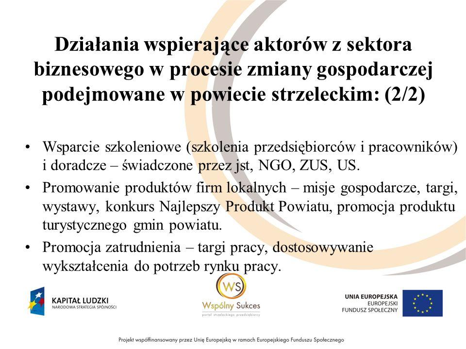 Działania wspierające aktorów z sektora biznesowego w procesie zmiany gospodarczej podejmowane w powiecie strzeleckim: (2/2) Wsparcie szkoleniowe (szk