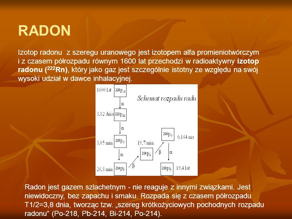 RADON Izotop radonu z szeregu uranowego jest izotopem alfa promieniotwórczym i z czasem półrozpadu równym 1600 lat przechodzi w radioaktywny izotop ra