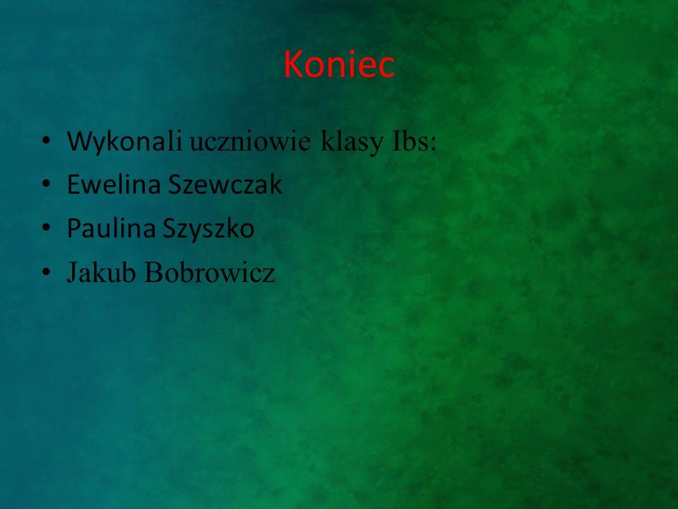 Koniec Wykona li uczniowie klasy Ibs : Ewelina Szewczak Paulina Szyszko Jakub Bobrowicz