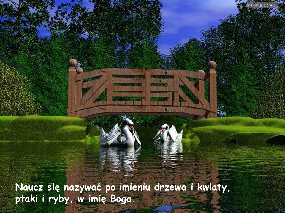 Naucz się nazywać po imieniu drzewa i kwiaty, ptaki i ryby, w imię Boga.