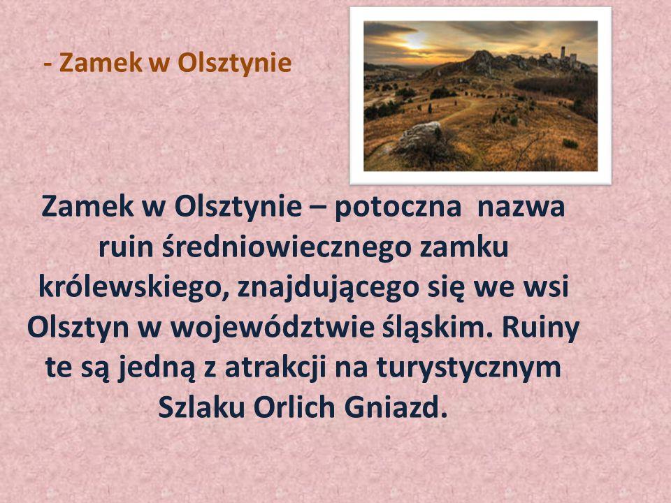 -Zamek w Olkuszu