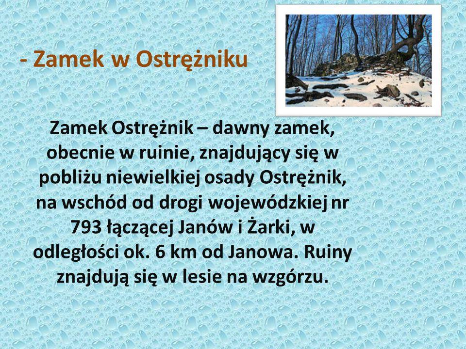 - Zamek w Olsztynie Zamek w Olsztynie – potoczna nazwa ruin średniowiecznego zamku królewskiego, znajdującego się we wsi Olsztyn w województwie śląski