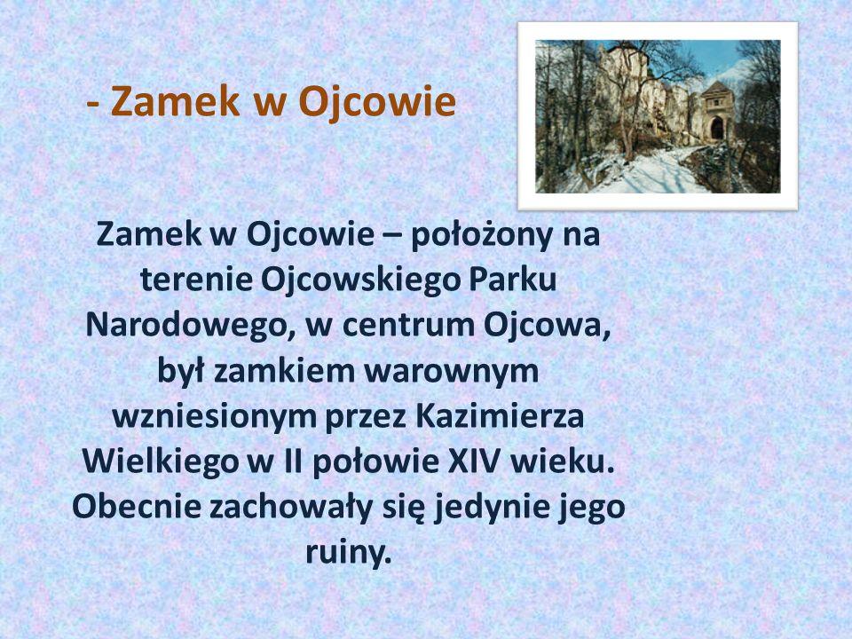 - Zamek w Ojcowie Zamek w Ojcowie – położony na terenie Ojcowskiego Parku Narodowego, w centrum Ojcowa, był zamkiem warownym wzniesionym przez Kazimierza Wielkiego w II połowie XIV wieku.