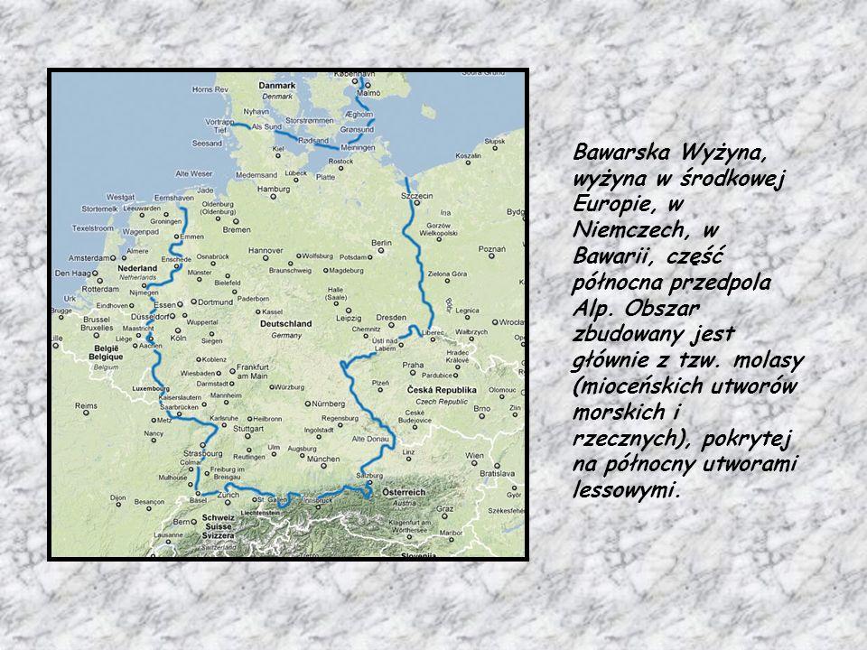 Bawarska Wyżyna, wyżyna w środkowej Europie, w Niemczech, w Bawarii, część północna przedpola Alp. Obszar zbudowany jest głównie z tzw. molasy (mioceń