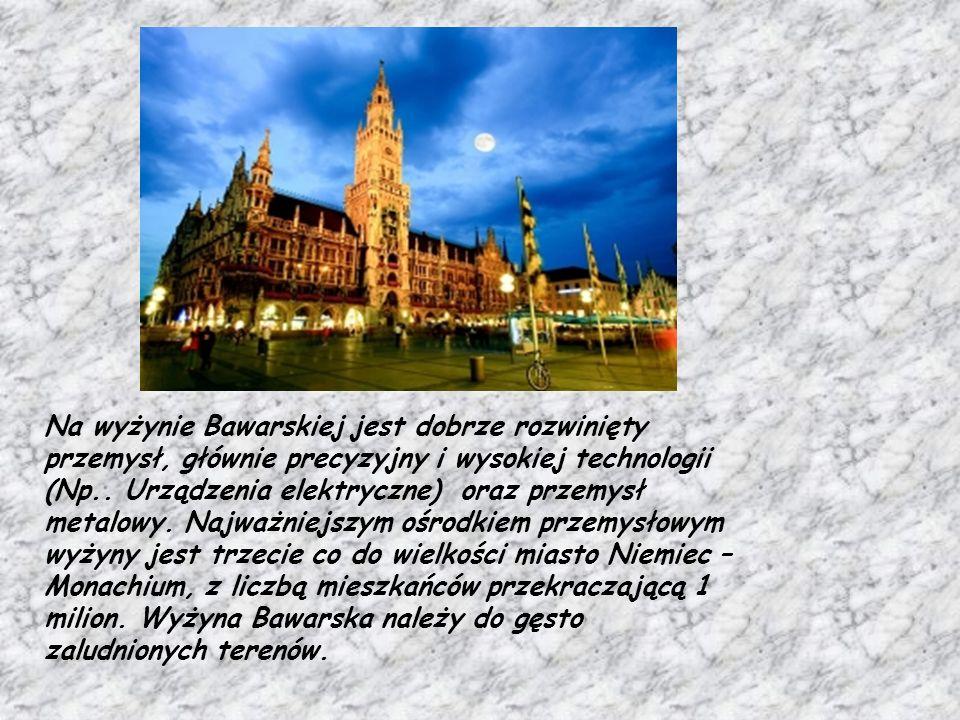 Na wyżynie Bawarskiej jest dobrze rozwinięty przemysł, głównie precyzyjny i wysokiej technologii (Np.. Urządzenia elektryczne) oraz przemysł metalowy.