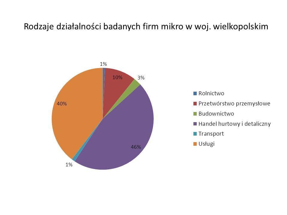 Rodzaje działalności badanych firm mikro w woj. wielkopolskim