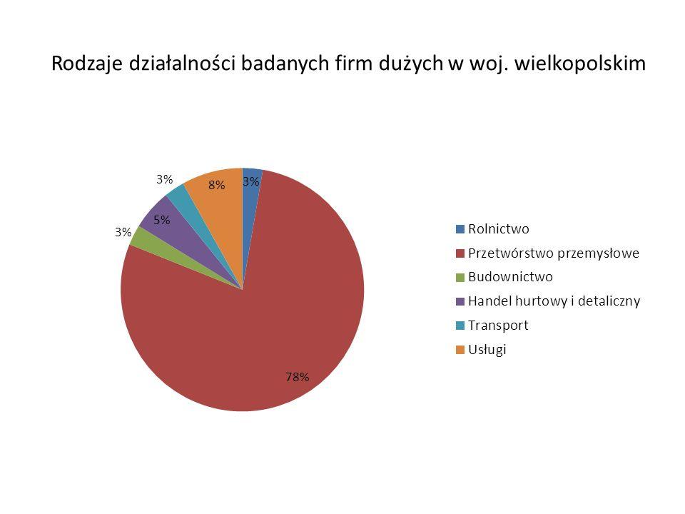 Rodzaje działalności badanych firm dużych w woj. wielkopolskim
