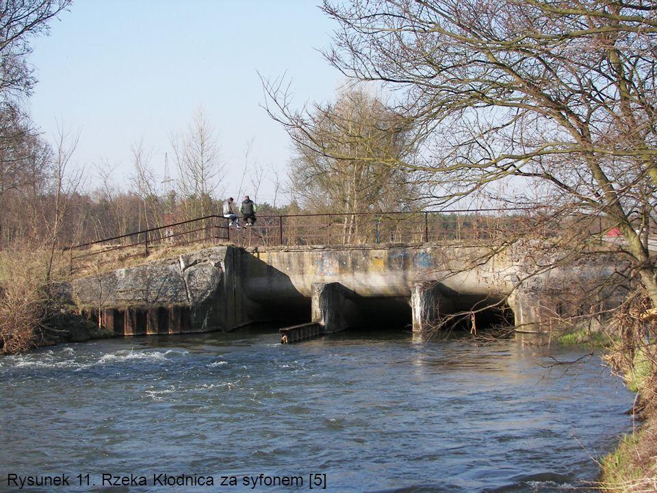 Rysunek 11. Rzeka Kłodnica za syfonem [5]